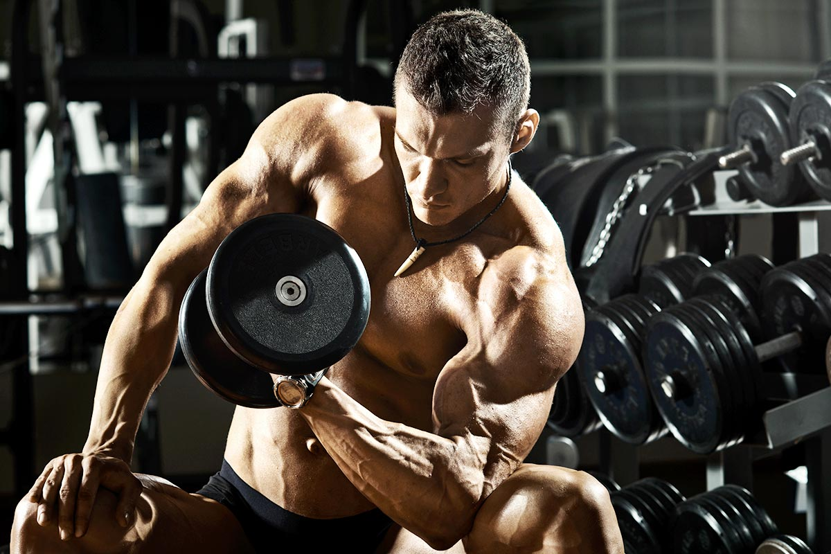 Types Of SARMs Best SARMs For Bodybuilding Alpha Pharm Canada